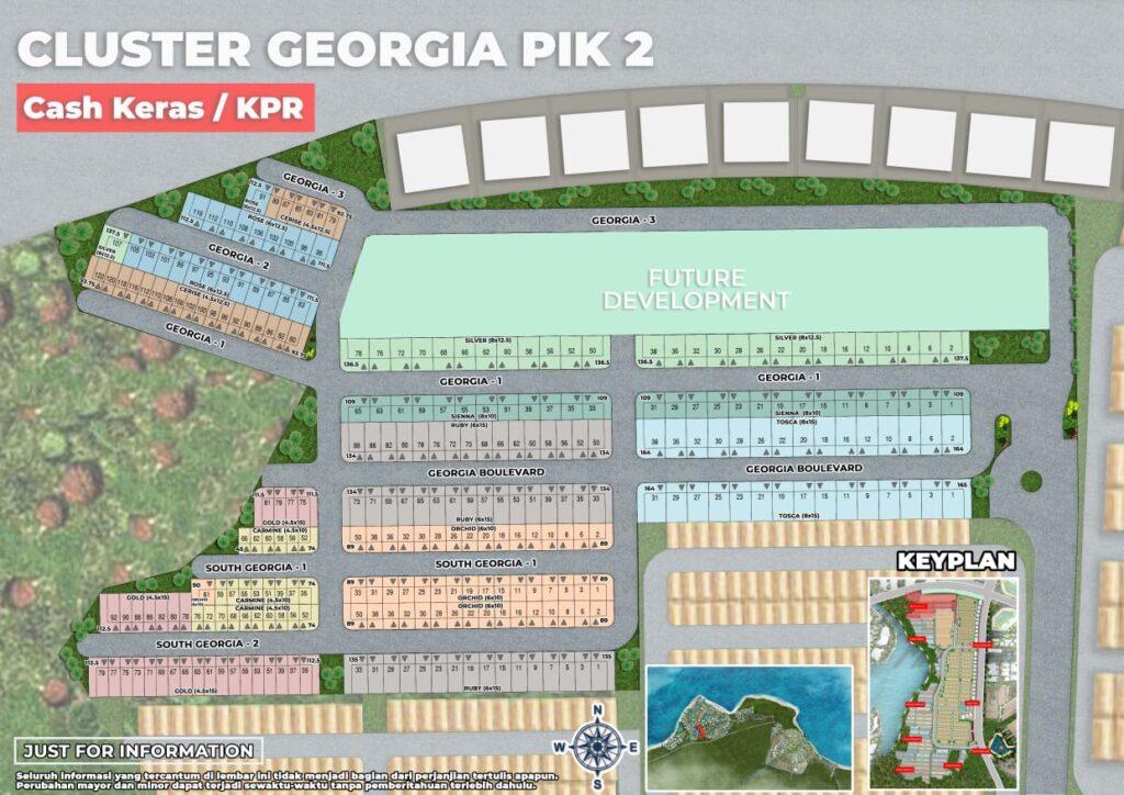cluster georgia